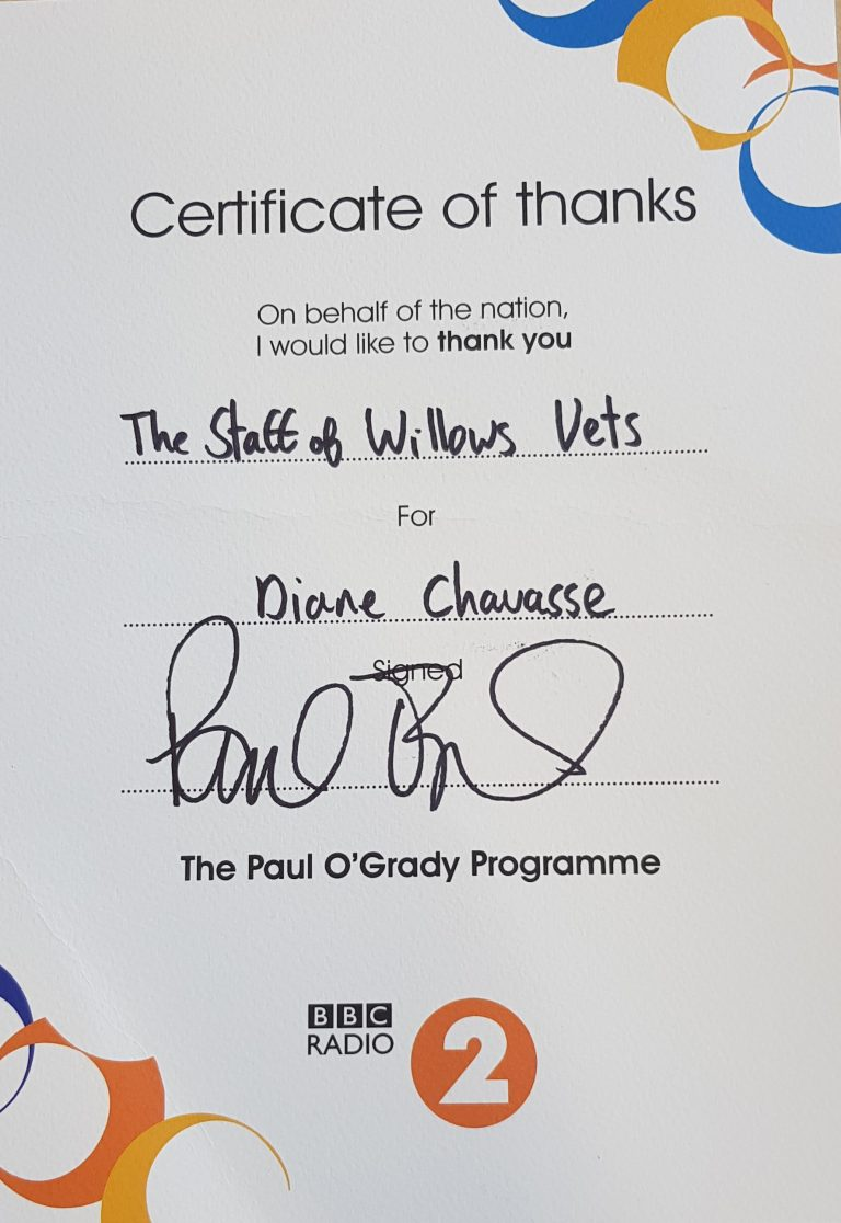 bbc-radio-2-certificate-of-thanks